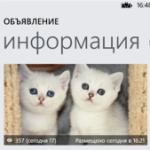 Avito для Nokia Lumia
